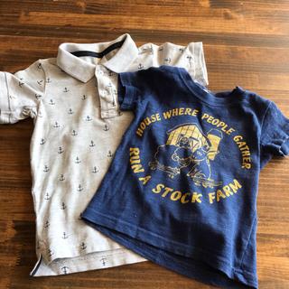 ターカーミニ(t/mini)のムー様専用ポロシャツとTシャツ(Tシャツ)