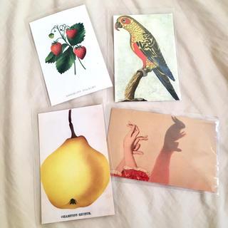 アッシュペーフランス(H.P.FRANCE)のJohn Derian ジョンデリアン ポストカード 4枚セット③ いちご 鳥(切手/官製はがき)