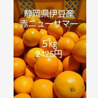 東伊豆産ニューサマーオレンジ 5㎏(フルーツ)