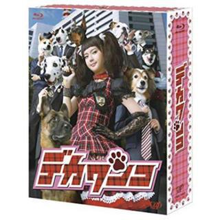 ニュース(NEWS)のデカワンコ Blu-ray BOX(TVドラマ)