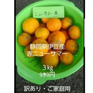 ニューサマーオレンジ 赤 訳あり品3㎏(フルーツ)