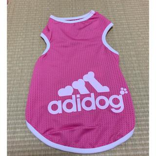 アディダス(adidas)の【新品!未使用!】(犬)