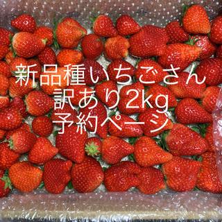 規格外いちごさん予約ページ●苺イチゴ(フルーツ)