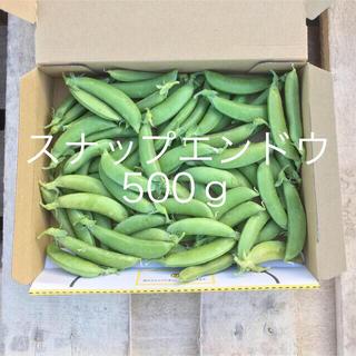 鹿児島産スナップエンドウ箱込み500g^_^(野菜)