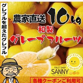 農家直送‼️訳あり渋味の少ない和製グレープフルーツ10kg(フルーツ)