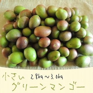 《3キロ-1》主に小さい グリーンマンゴー 約3kg  青マンゴー 加工用(フルーツ)