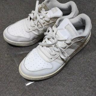 アディダス(adidas)の美品 adidas neo  ホワイト スニーカー(スニーカー)