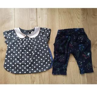 ターカーミニ(t/mini)のターカーミニのTシャツ とパンツのセット 90(Tシャツ/カットソー)