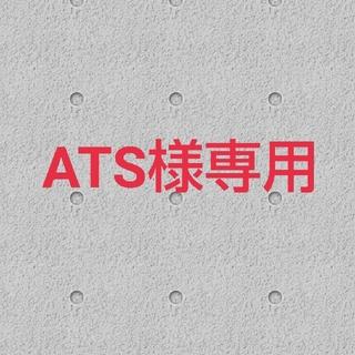 ATS様専用 ディスクケース1枚(CD/DVD収納)
