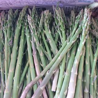 佐賀県産グリーンアスパラ1.5キロ(訳ありの訳あり)(野菜)
