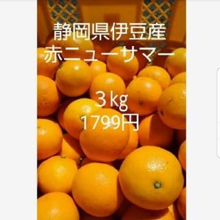 東伊豆産 ニューサマーオレンジ3㎏(フルーツ)