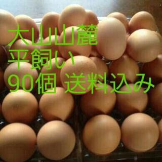大山山麓平飼い赤玉90個送料込(野菜)
