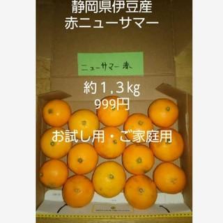 伊豆産 ニューサマーオレンジ(フルーツ)