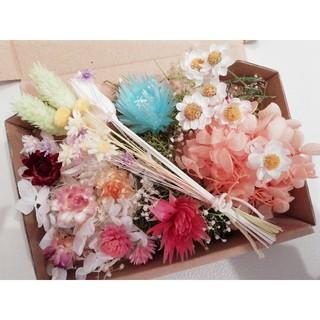 ハーバリウム花材 ~春のお花畑2~(ドライフラワー)