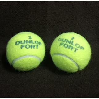 ダンロップ(DUNLOP)のダンロップ テニスボール 2個(ボール)