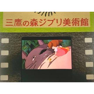 ジブリ - 指紋なし 三鷹の森ジブリ美術館 入場券 フィルム となりのトトロ めいなめトトロ