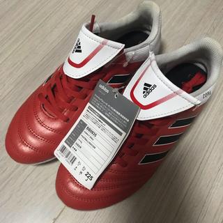 アディダス(adidas)の新品  22.5cm  アディダス  スパイク(シューズ)