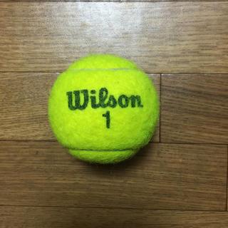 ウィルソン(wilson)のウィルソンテニスボール 1個(ボール)