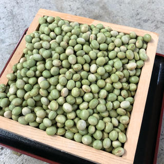 平成30年産 山形県産 青大豆 秘伝 5キロ(豆腐/豆製品)