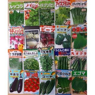 【春蒔き野菜の種】6袋以上でご購入ください(野菜)