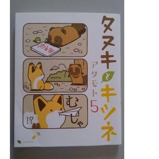 タヌキとキツネ アタモト5 本