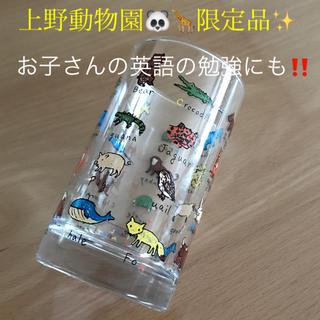 上野動物園 限定🦒🐘❤️アニマルグラス 【送料800円込み】(グラス/カップ)