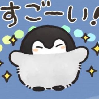 せんよう(ワールドミュージック)