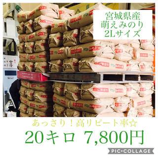 タク様専用☆宮城県産萌えみのり20キロ(米/穀物)