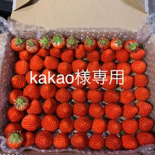 kakao様専用●小粒完熟いちご●2箱(約1.3kg)クール便(フルーツ)