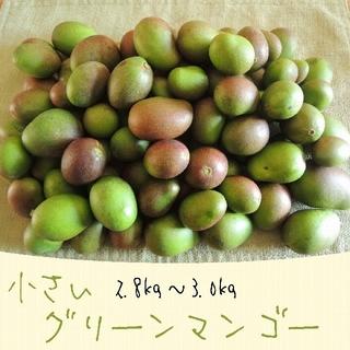 《3キロ-2》主に小さい グリーンマンゴー 約3kg  青マンゴー 加工用(フルーツ)
