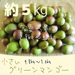 《5キロ-1》約5キロ 小さい グリーンマンゴー 青マンゴー 加工用(フルーツ)