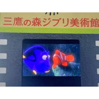 ジブリ(ジブリ)のファインディング・ニモ 三鷹の森ジブリ美術館 フィルム 入場券 期間限定の柄 (美術館/博物館)