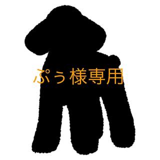 ぷぅ様専用(あみぐるみ)