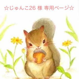 キャンメイク(CANMAKE)のじゅんこ26 様 専用ページ☆ excel パウダー、 クリームチークセット(その他)