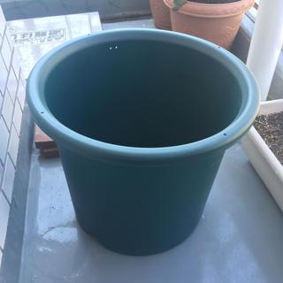 植木鉢(大型)(プランター)