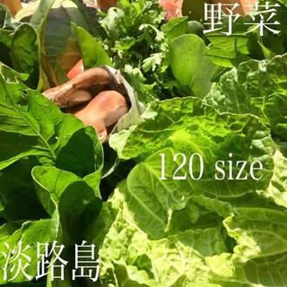 淡路島【 きまぐれ 】120 野菜set(野菜)