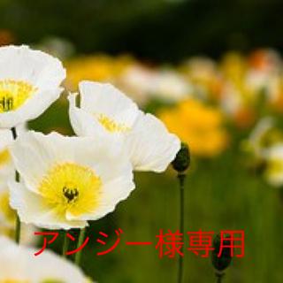 スピードラーニング ジュニア Vol.1〜Vol.12(CDブック)