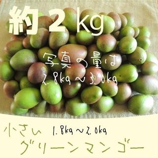 《2キロ-1》主に小さい グリーンマンゴー 約2kg  青マンゴー 加工用(フルーツ)