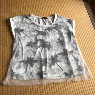 ジェットセット(JET SET)のJET SET 半袖 Tシャツ カットソー(Tシャツ(半袖/袖なし))
