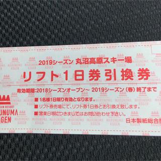 丸沼高原スキー場 1日リフト引換券(スキー場)