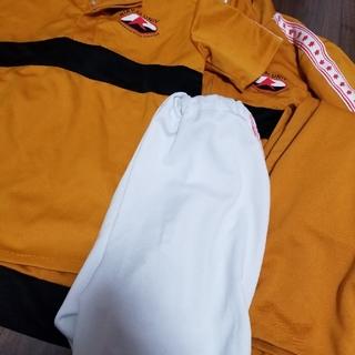 シュウエイシャ(集英社)のコスプレテニスの王子様 テニプリ 立海大附属中学 ジャージ1式 セット(衣装一式)