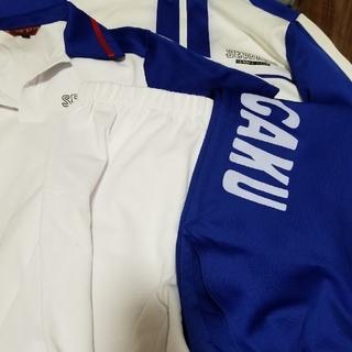 シュウエイシャ(集英社)のコスプレ テニプリ テニスの王子様 青春学園中学 一式セット(衣装一式)