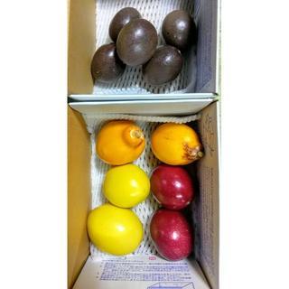 沖縄本島北部産 4種のパッションフルーツお試しセット♪(フルーツ)