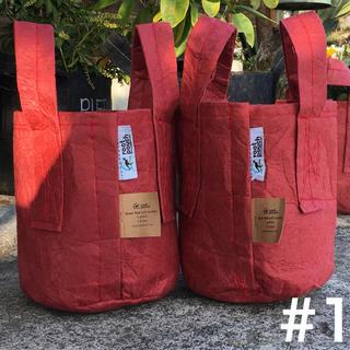ルーツポーチ☆アメリカのトートバッグ型エコ植木鉢1ガロン☆レッド2点セット花苗木(プランター)