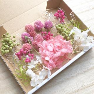 花材セット ピンク&グリーン プリザーブド ドライフラワー  ハーバリウムに♪(ドライフラワー)