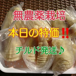 訳あり☆【チルド発送♪】  和歌山県産 孟宗たけの子 水煮 2kg (野菜)