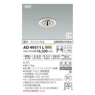 コイズミ(KOIZUMI)のAD49511L(天井照明)