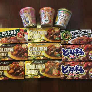 スープ春雨 カレー まとめ売り(レトルト食品)