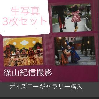 ディズニー(Disney)の実写 生写真3枚セット 篠山紀信(写真)