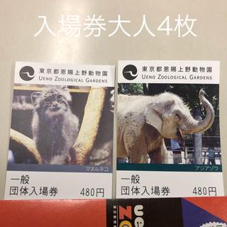 上野動物園一般団体入場券大人4枚(動物園)